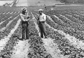 Ohtohiko Koura Farm circa 1925